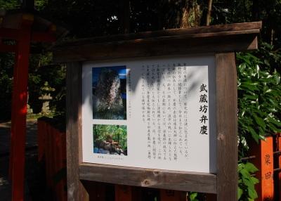 Hayatama7