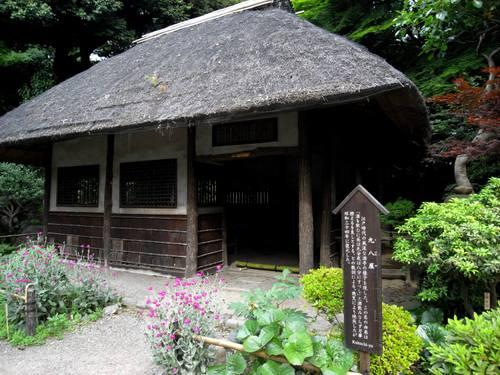Kuhachiya1